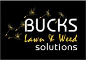 bucks-lawn-weed